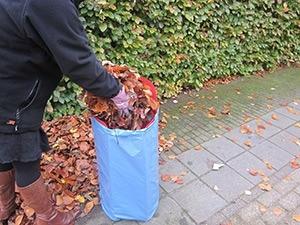 pack-bag-3-marcelineke