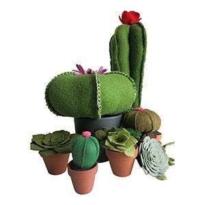 vilten-plantjes-vetplantjes-en-cactussen-van-vilt-marcelineke