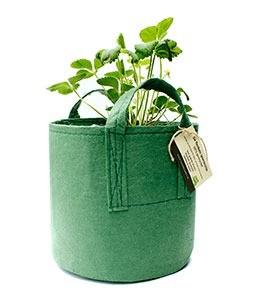 flexibele-plantentas-marcelineke