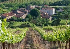 Culinaire wijnreis Languedoc