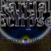 ALBUM: Partial Solar Eclipse