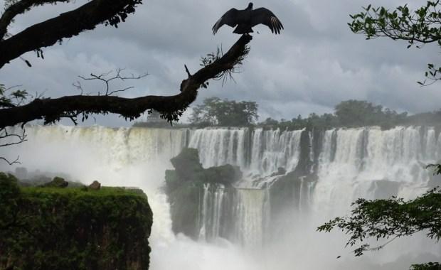 Iguacu en Buenos Aires