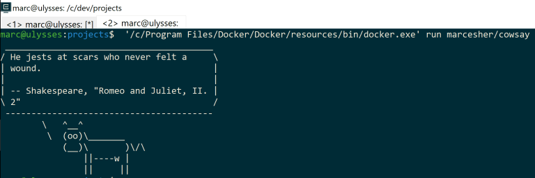 Running the Windows Docker client from within WSL