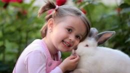 Jeannot lapin et la petite fille