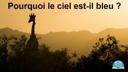 Le ciel est bleu grâce à la girafe