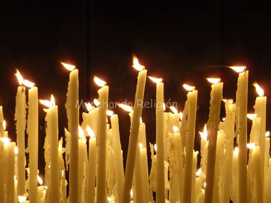 quinta aparición en Lourdes-Marchando Religión