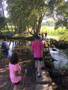 nordic_walking_piedra_agua