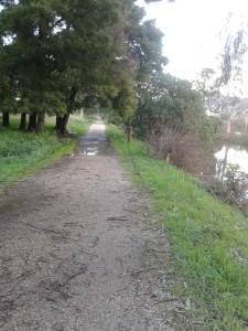 nordic_walking_en_pontevedra