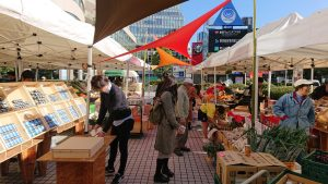 Farmers-Market-at-UNU20191130(12)