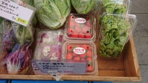Farmers-Market-at-OVAL20210220(17)