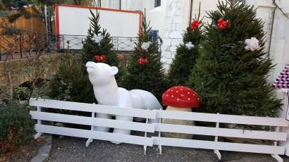 L'ours blanc entouré de sapins