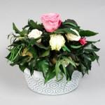 Décoration Végétale Stabilisée - Art Floral