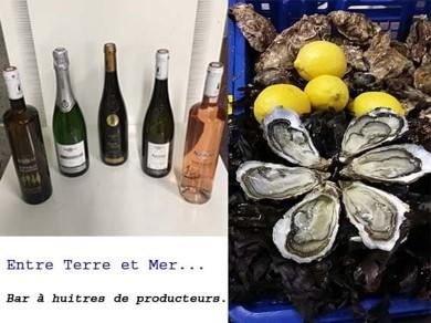 aguilas-les-deux-presquiles-marche-de-noel-angers-2018