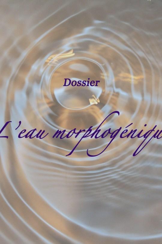 Dossier : l'Eau Morphogénique