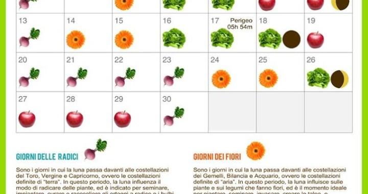 il calendario nell'orto