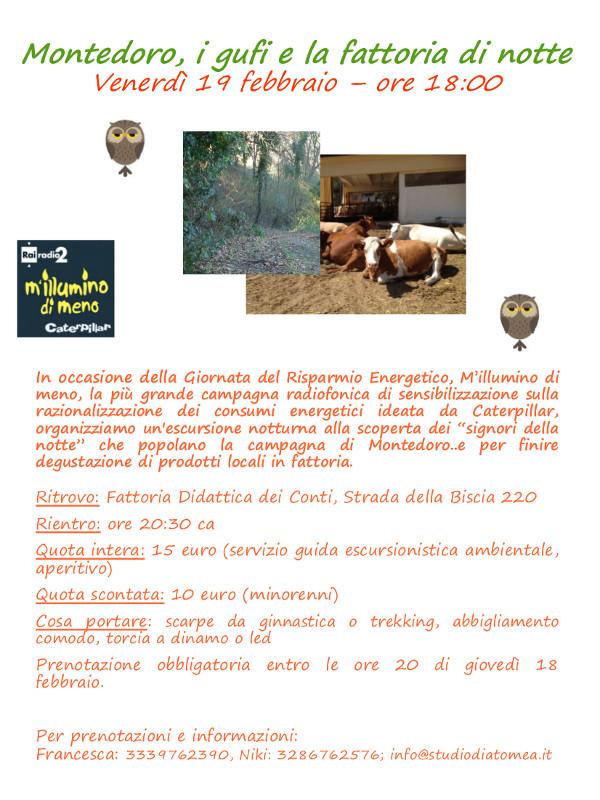 02-19-montedoro-gufi-fattoria-notte