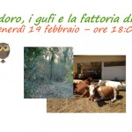 Montedoro, i gufi e la fattoria di notte, escursione notturna