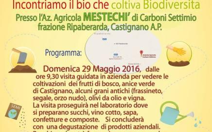 aziende biologiche