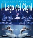 """Compagnia Nazionale Raffaele Paganini """"Il Lago dei Cigni"""""""