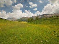 Giornata Mondiale dell'Ambiente 5 giugno