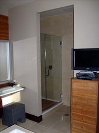 shower doors 2