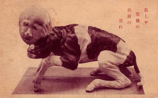 kudan japon (4)