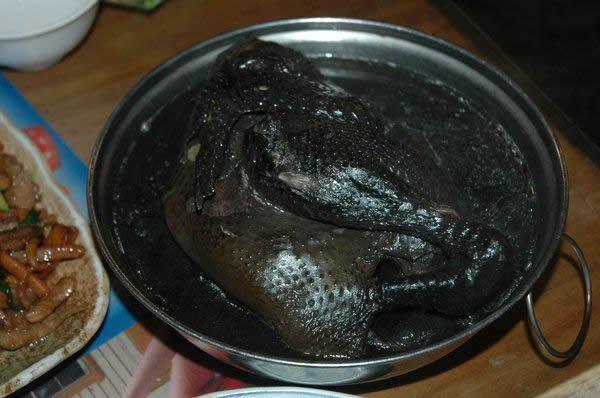 Pollos Negros Silkies (5)