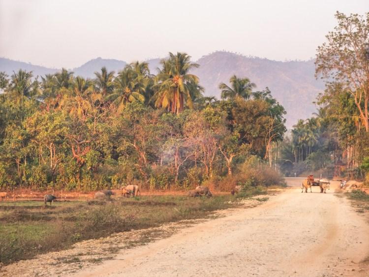 Unterwegs auf einer Naturstrasse in Myanmar