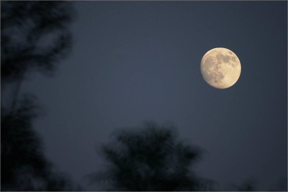 Super Luna (1/3)