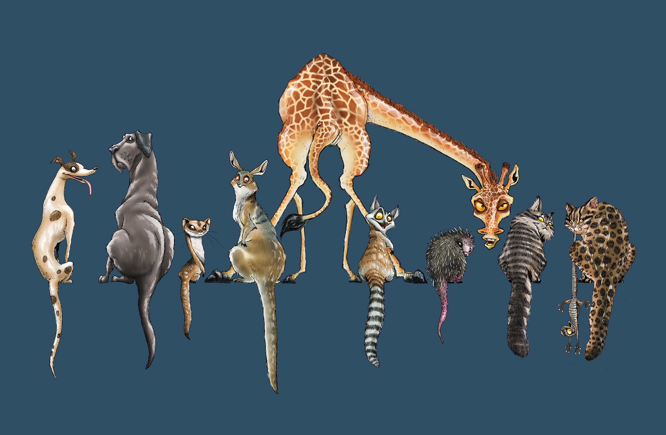 Top 10 Animals With Long Tails