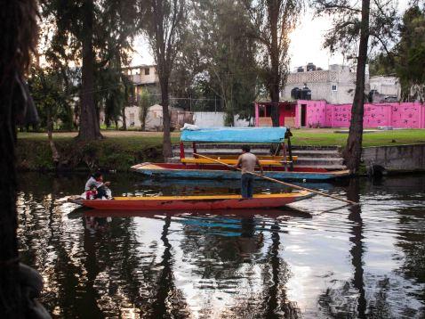 Mexico2013jpeg-265401