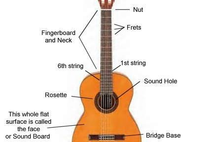 guitar parts diagram electric boiler wiring diagrams index of wp content uploads 2013 04 classical 432x288 jpg