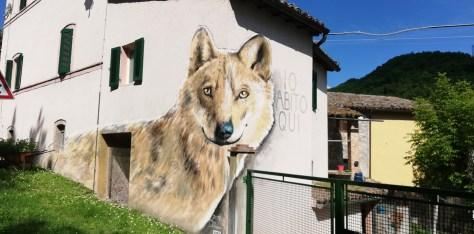 Piccolo viaggio tra arte e zafferano. Il lupo ritratto in prospettiva nell'angolo di una casa.