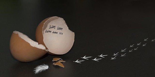 """Usciti dal """"Lockdown"""" Pronti a ripartire? - Foto di Henri Van Ham da Pixabay"""