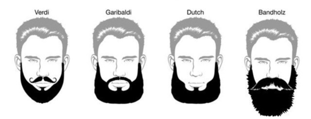 Estilos de barba masculina