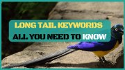 Long Tail Keywords & Long Tail PRO In Affiliate Marketing