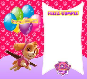 cumpleaños paw patrol niñas - tarjetas de skye invitaciones de cumpleaños paw patrol