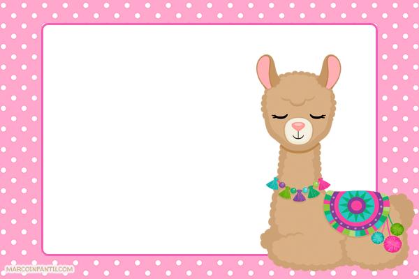 llamas cute alpaca