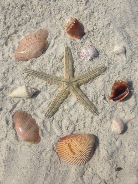 South Beach Marco Island