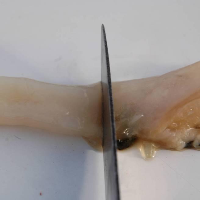 Tagliamo il mollusco in pezzi da 3/4 centimetri