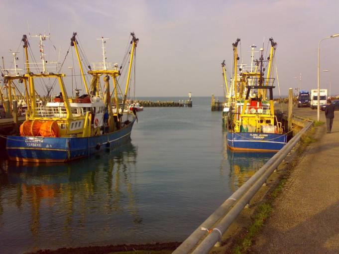 navi professionali da pesca nel porto di colijnsplaat