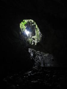 Mulu cave