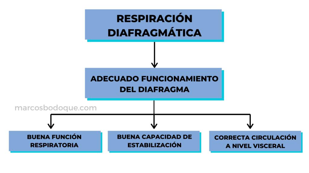 efectos respiración diafragmática