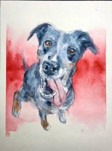 floppy tongued dog