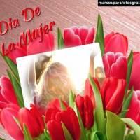 Mejores Marcos del día de la Mujer 8 de Marzo