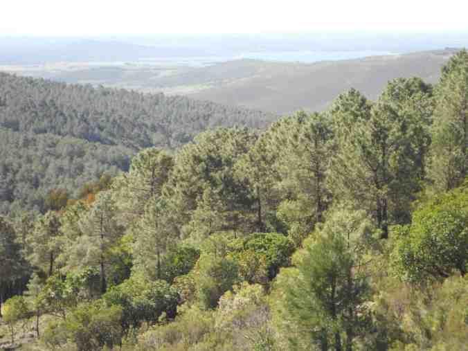 Pantano-Gabriel-y-Galán-Cáceres