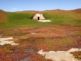 Bunker Reclamation
