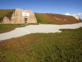 Bunker Drive