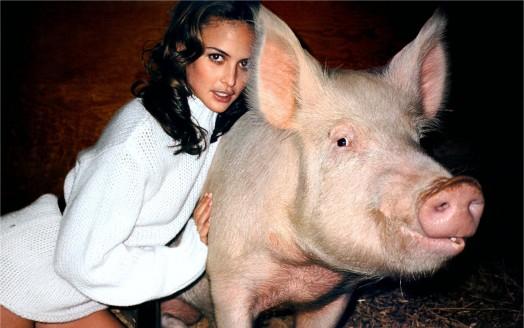 Josie Maran a caron dun porco