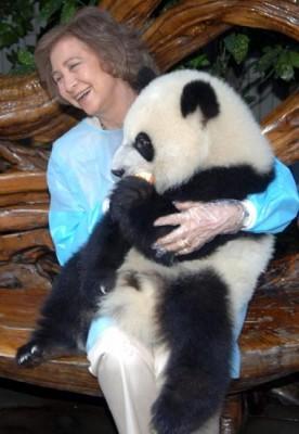 Dona Sofía cun panda